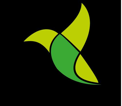 equipe_oiseau2